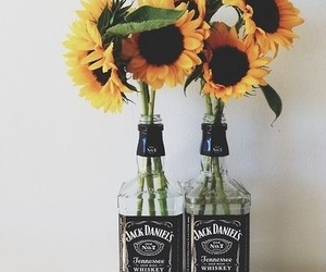 flowers, sunflower, and jack daniels image