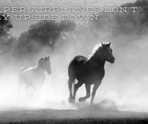 caballos, sayings, and text image