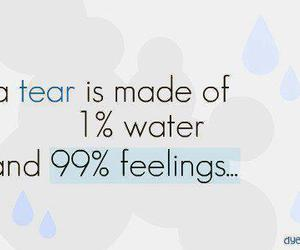 feelings, tear, and text image