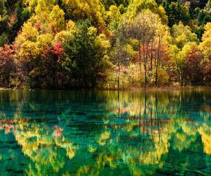nature photography image
