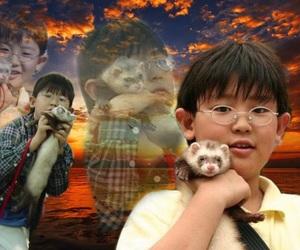 exo, memes, and ferret image