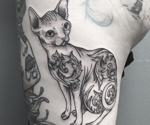 cat, ink, and sphynx image