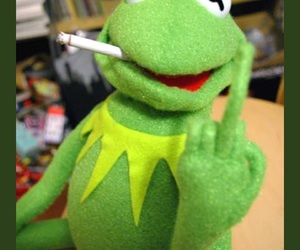 86 images about kermit the frog on We Heart It | See more