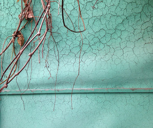 abstract photography, mint green, and mint image