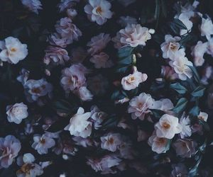 flowers, alternative, and tumblr image