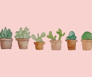 header, pink, and plants image