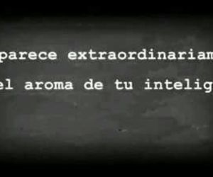 aroma, frase, and frases image