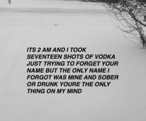 quotes, drunk, and vodka image