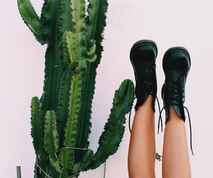 cactus, boots, and tumblr image
