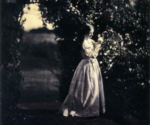 julia margaret cameron and victorian image