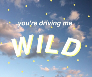 wild, quotes, and troye sivan image