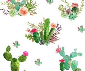 cactus, color, and pattern image