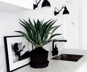 decor, interior, and plant image
