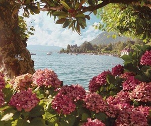 flowers, place, and place to relax image