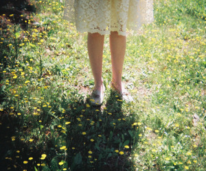 beautiful, green, and legs image