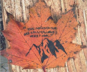 mountains, leaves, and autumn image
