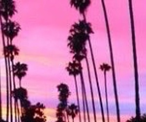 pink, sunset, and trees image