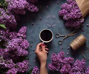 amazing, art, and coffee image
