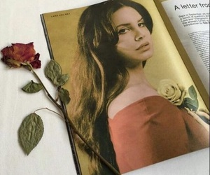 lana del rey, rose, and magazine image
