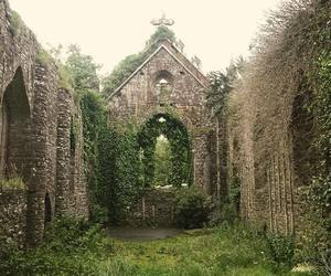 abandoned, church, and ireland image