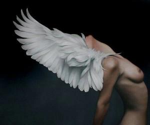 art and angel image