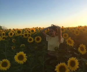 sunflower and woman image