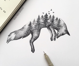 forest, fox, and illustration image