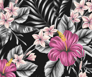 black and white, patterns, and flowers image