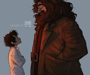 hagrid and harry potter image