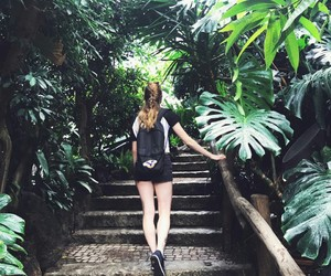 adventure, jungle, and palm trees image