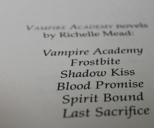 vampire academy, shadow kiss, and frostbite image