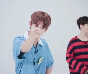 wanna one, bae jinyoung, and kpop image