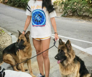 dogs, family, and fashion image
