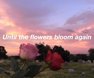 quote, bts, and seokjin image