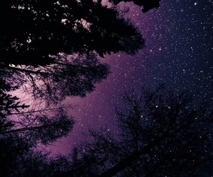 stars, sky, and purple image