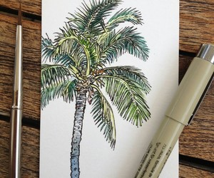 drawing, art, and palm trees image