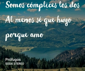 amor, cancion, and frases image