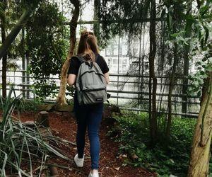 bag, plants, and beautiful image