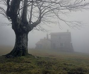 literature and wuthering heights image