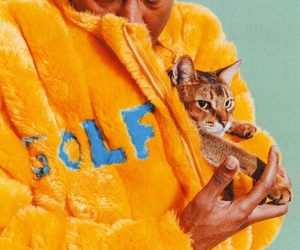 golf and cat image