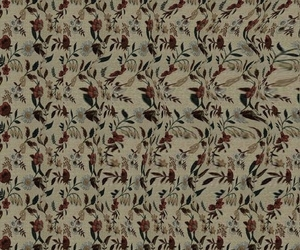 zoom, build your own, and stereogram image