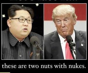 trump, donald trump, and dump trump image