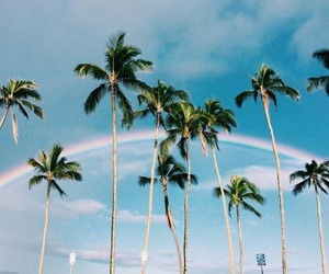 summer, rainbow, and sky image