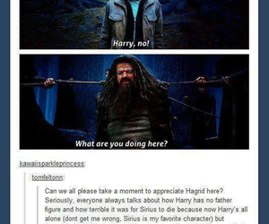 harry potter, hagrid, and tumblr image