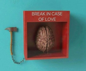 love, brain, and break image