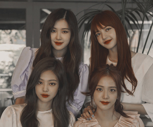 korea, rose, and yg image