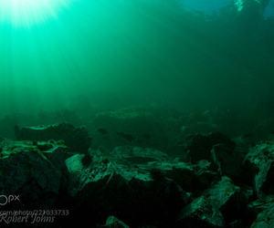 green, ocean floor, and underwater photography image