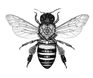bee and drawing image