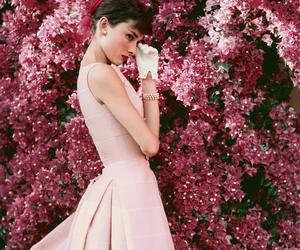 audrey hepburn, pink, and audrey image