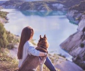 adventure, dog, and inspiration image